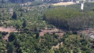 210221-01 IMAGENES DRONE GOPE BUSQUEDA DE TOMAS EL LEBU 07 (1)